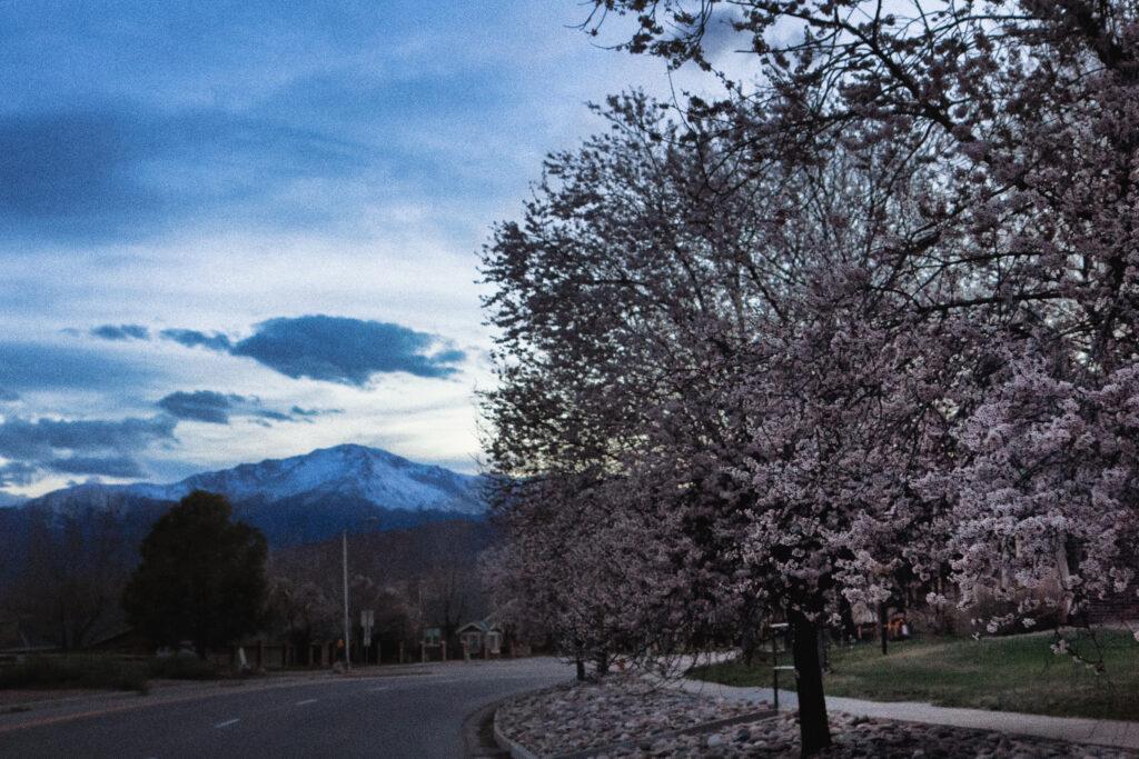 Colorado Springs Realtors - Selley Group Real Estate - Kristofer Warbritton
